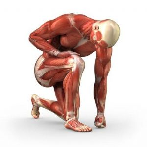 Es bueno practicar ejercicio cuando se tienen agujetas, pero no en el momento de más dolor