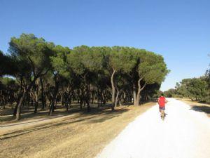 Los corredores estamos muy expuestos al sol y por eso es necesario usar protección