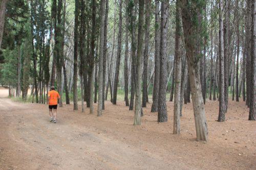 El autor del artículo, Paco Noguera, corriendo por la ruta en los alrededores de Navajas