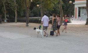Es preferible llevar el perro siempre atado en zonas muy concurridas