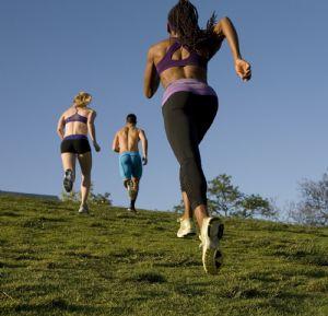 Es importante evitar el déficit de hierro en el organismo