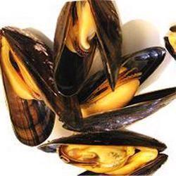 El mejillón es uno de los alimentos con más hierro