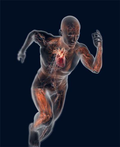 Los médicos recomiendan tomarse la tensión y controlar los esfuerzos