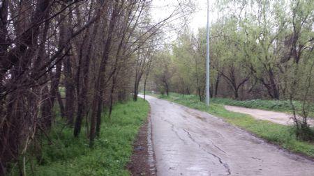 Camino del Parque Lineal del Manzanares