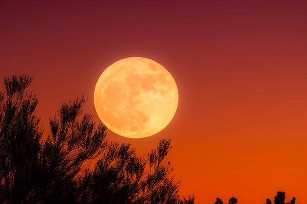 8a0295c232188 Relato  El runner de la Luna Llena